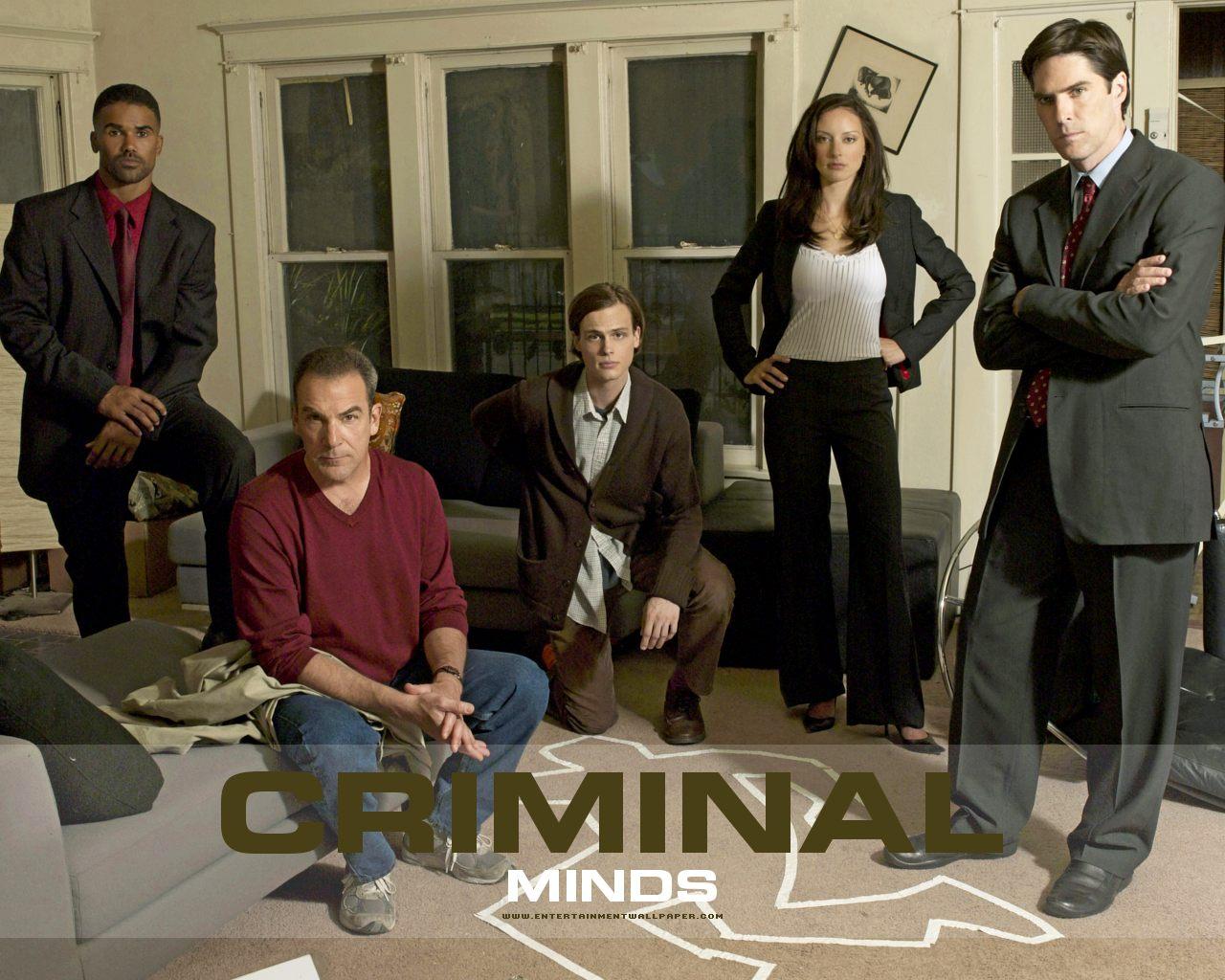 ver serie Criminal Minds online gratis