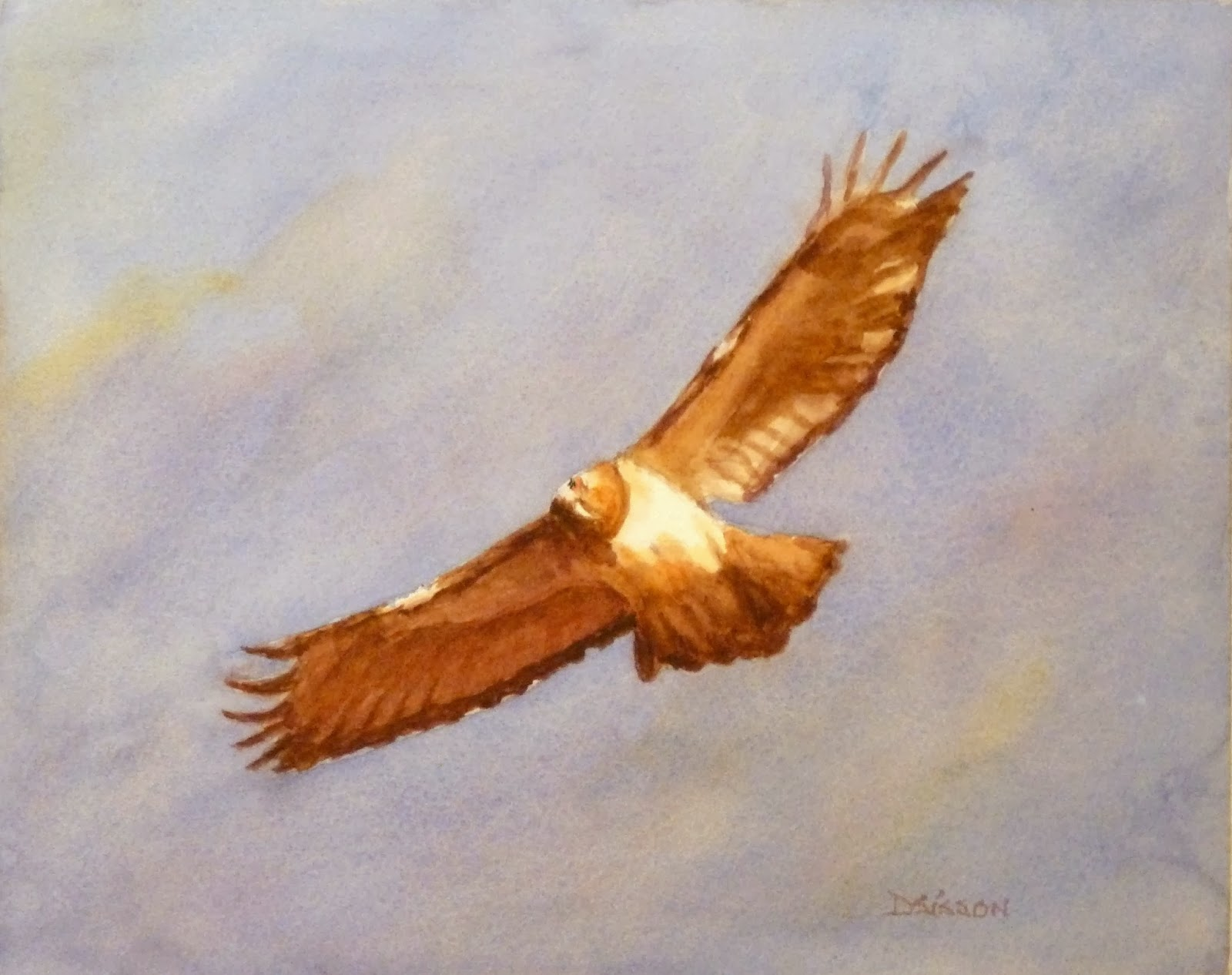 Hawk painting watercolor - photo#10