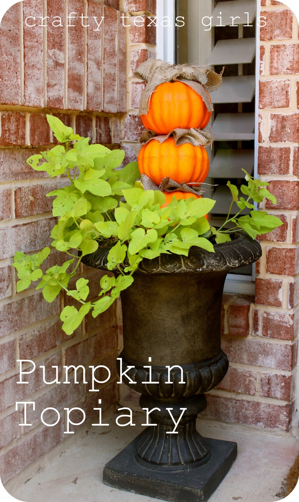 Pumpkin Topiary Ideas Part - 29: Crafty Texas Girls