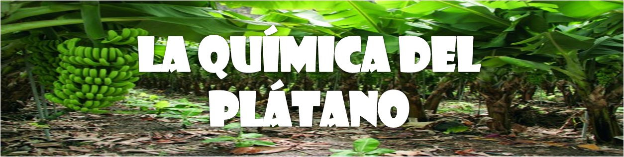 LA QUMICA DEL PLTANO