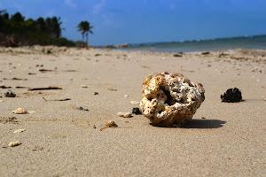 Индийский океан на ощупь