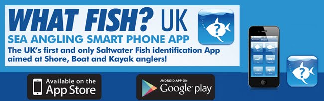What Fish UK