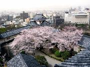 Hidakagwa Wakayama. Esta ciudad japonesa cuenta con una tradición muy .