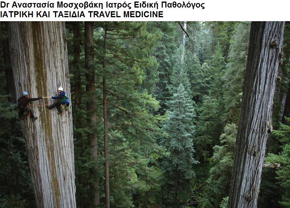 Dr Αναστασία Μοσχοβάκη Ειδική Παθολόγος ΙΑΤΡΙΚΗ ΚΑΙ ΤΑΞΙΔΙΑ - TRAVEL MEDICINE
