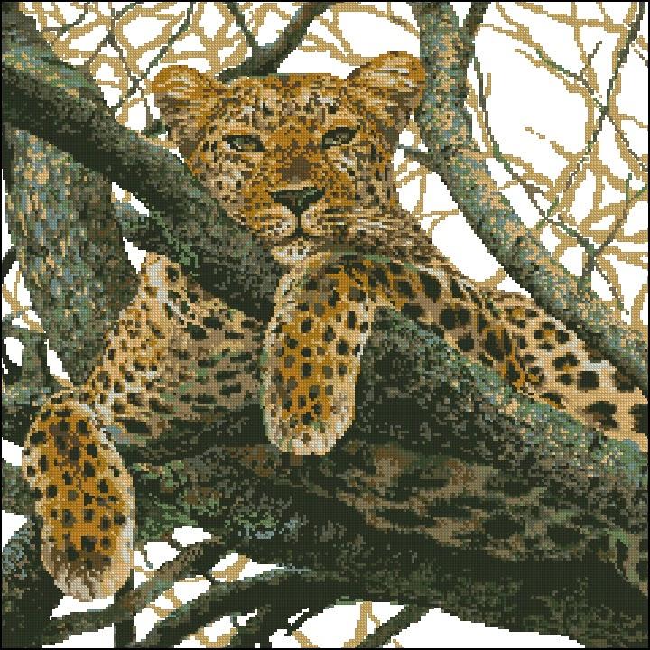 Скачать вышивку схему леопард