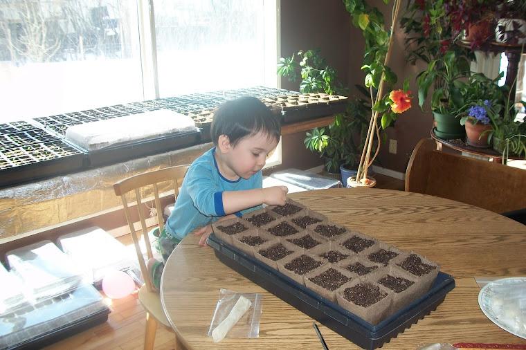 Owen Seeding