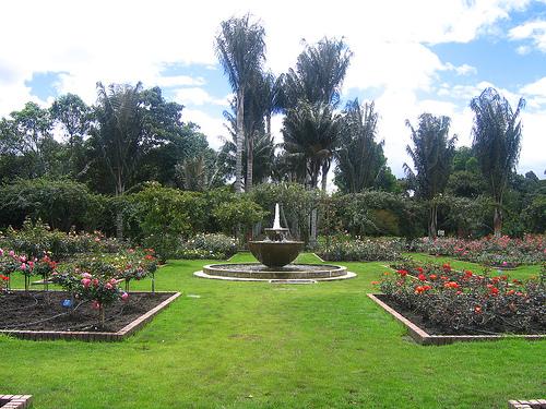 Nuestros productos y servicios for Jardin botanico bogota