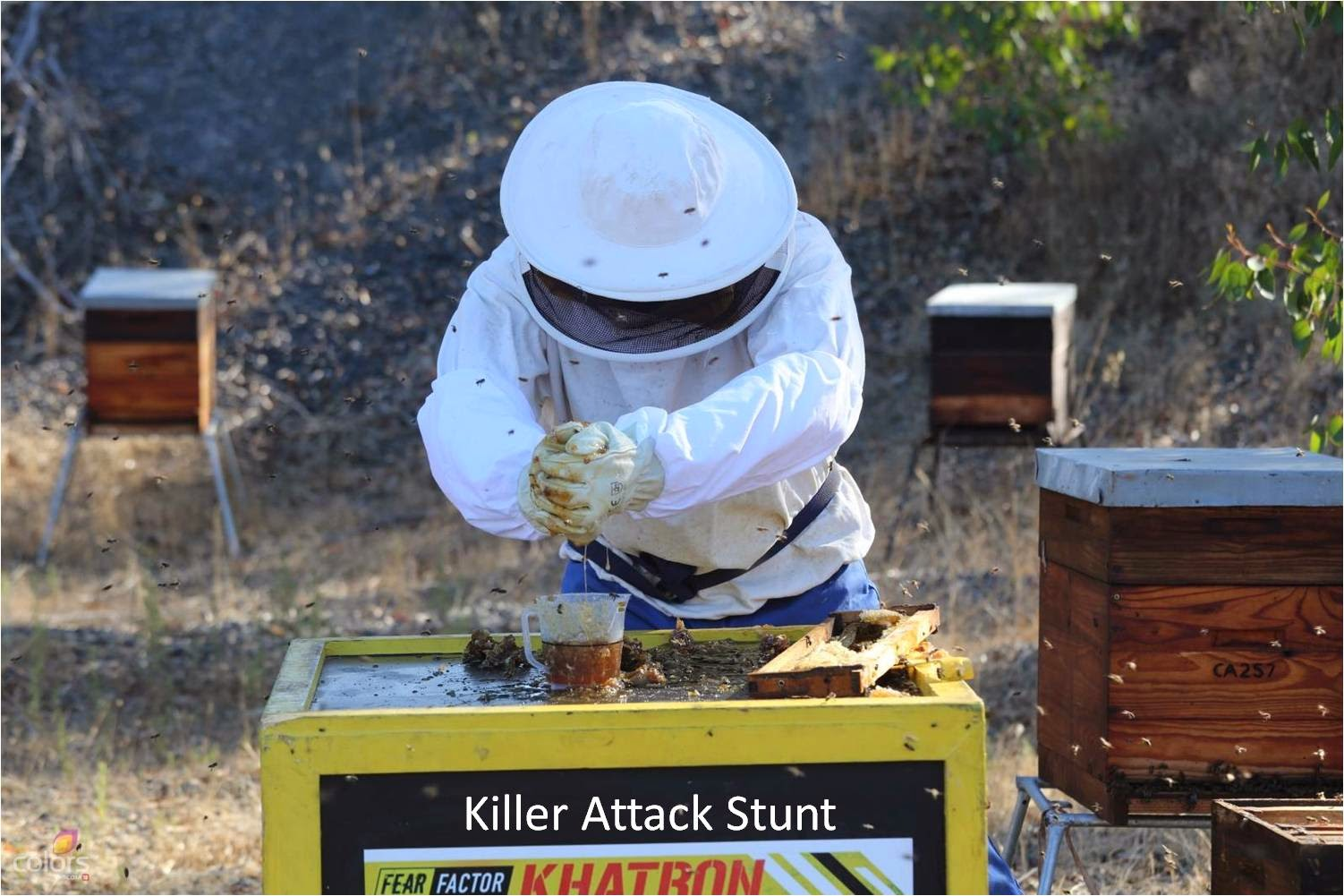 Khatron Ke Khiladi Dar Ka Blockbuster contestant with bees while squeezing honey in the stunt