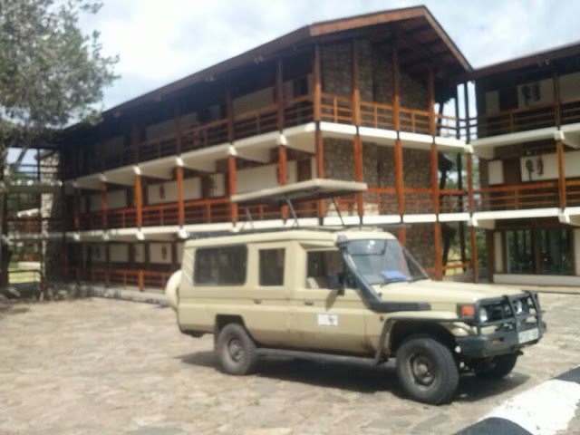 Lobo Wildlife Lodge - Serengeti