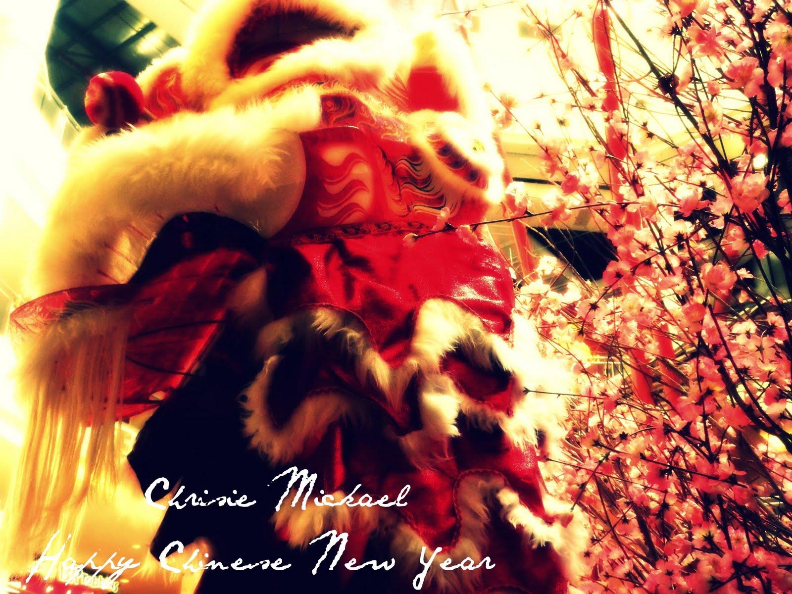 Chinese New Year Photo Shooting Skills 2011 Chrisie Mickael