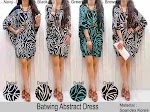 Batwing Dress SOLD OUT