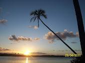 Conheça mais um pouco sobre Una - Uma das cidades que compõem a Costa do Cacau !!!