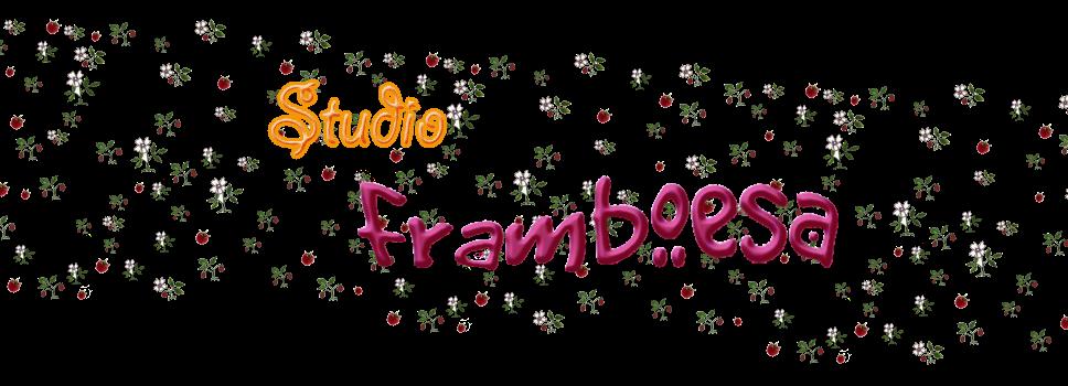 Studio Framboesa