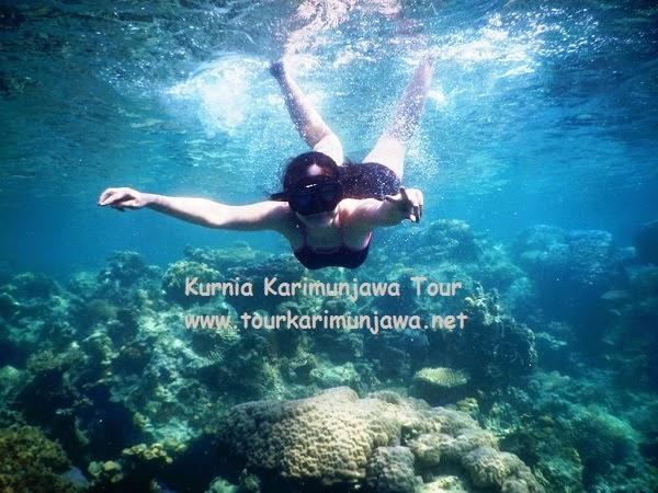 snorkeling in karimunjawa island