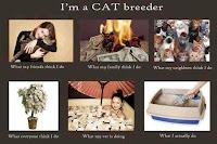 ëtre éleveur de chat...