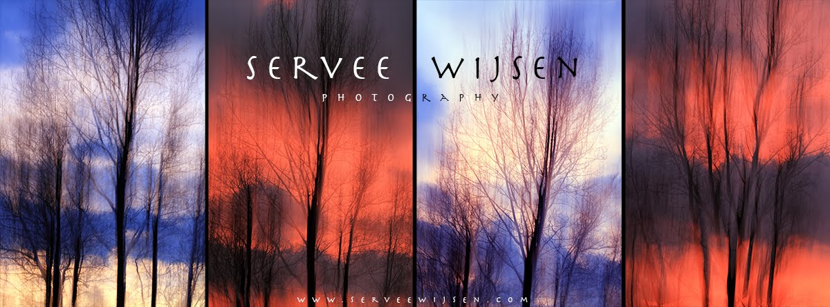 Servee Wijsen Photography