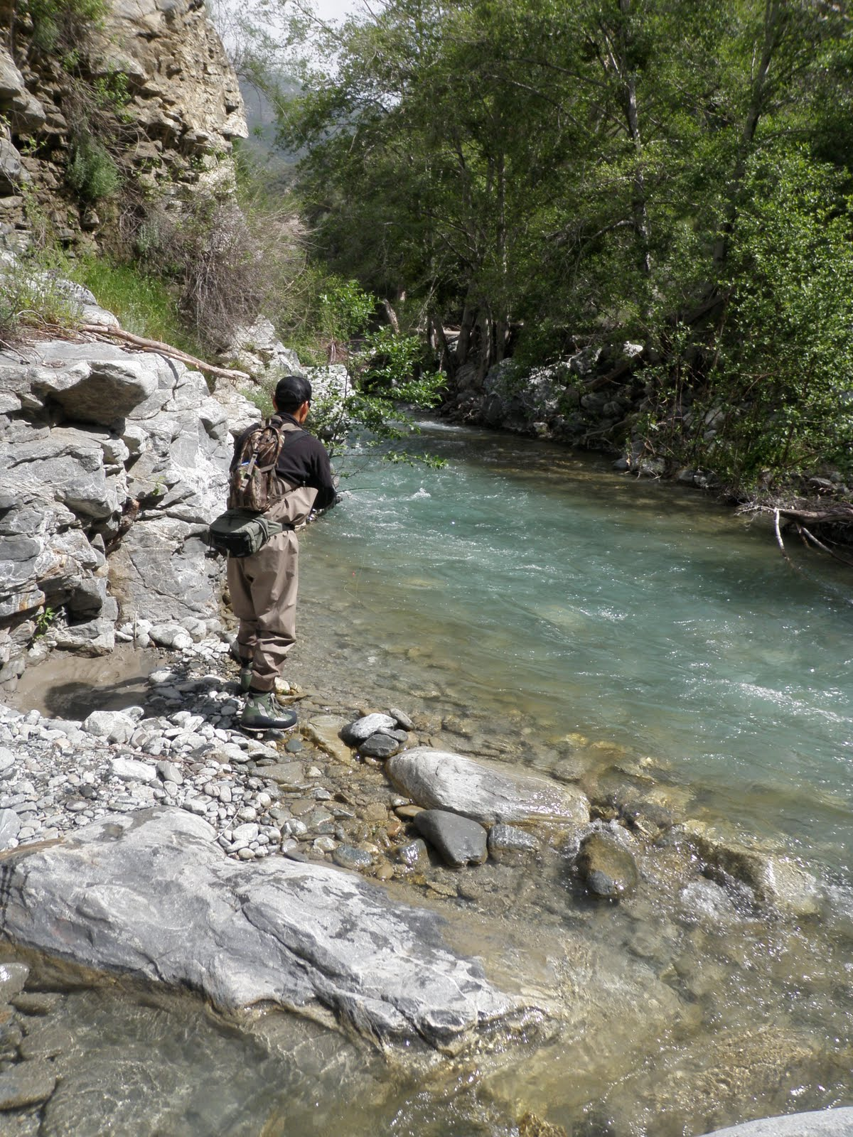 The gourmet sportsman san gabriel fly fishing report for East fork lake fishing report