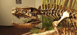 Dinosaur Hoax - Dinosaurs Never Existed! Museum-2