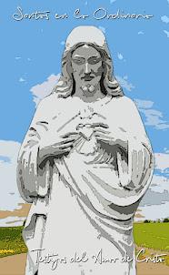 Santos en lo Ordinario