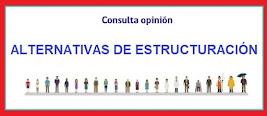 Consulta Alternativas de Estructuración - PRI Talca