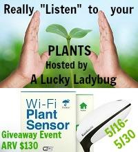 Wi-Fi Plant Sensor Giveaway Event