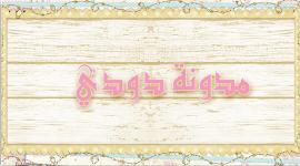 مدونة دودي