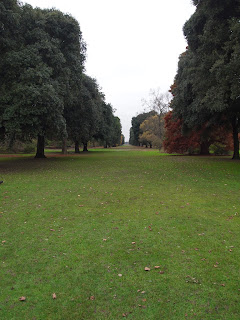 London based Garden Designer review of Kew Gardens. Winter interest in landscape design