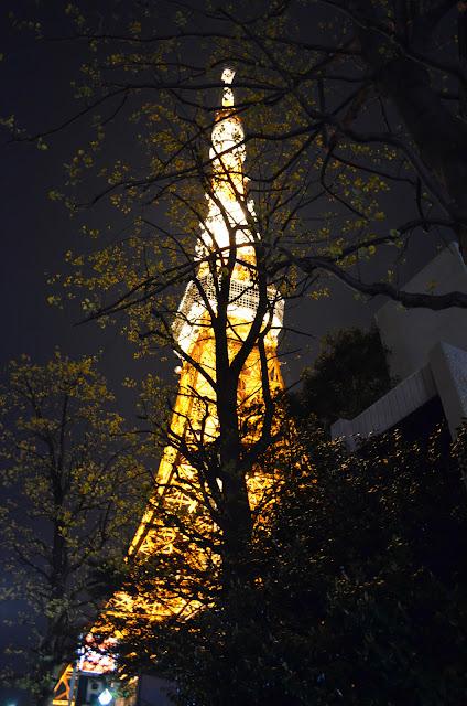 Tokyo Tower hidden among trees(東京タワーは木々の間に隠れて)