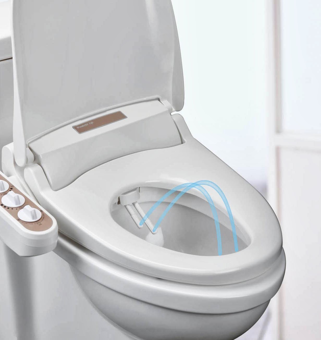 entree kibbles an ideal purchase for my ass the wellness bidet. Black Bedroom Furniture Sets. Home Design Ideas