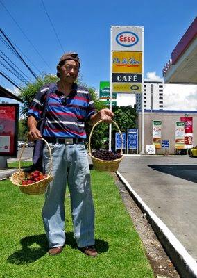Vendedor de fresas