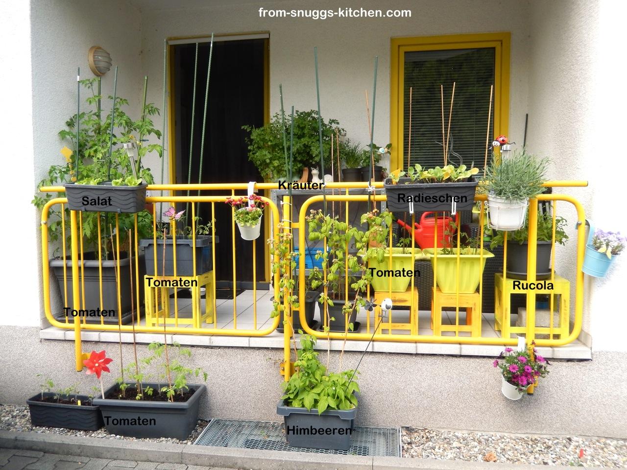 Balkon mit Tomaten Pflanzen