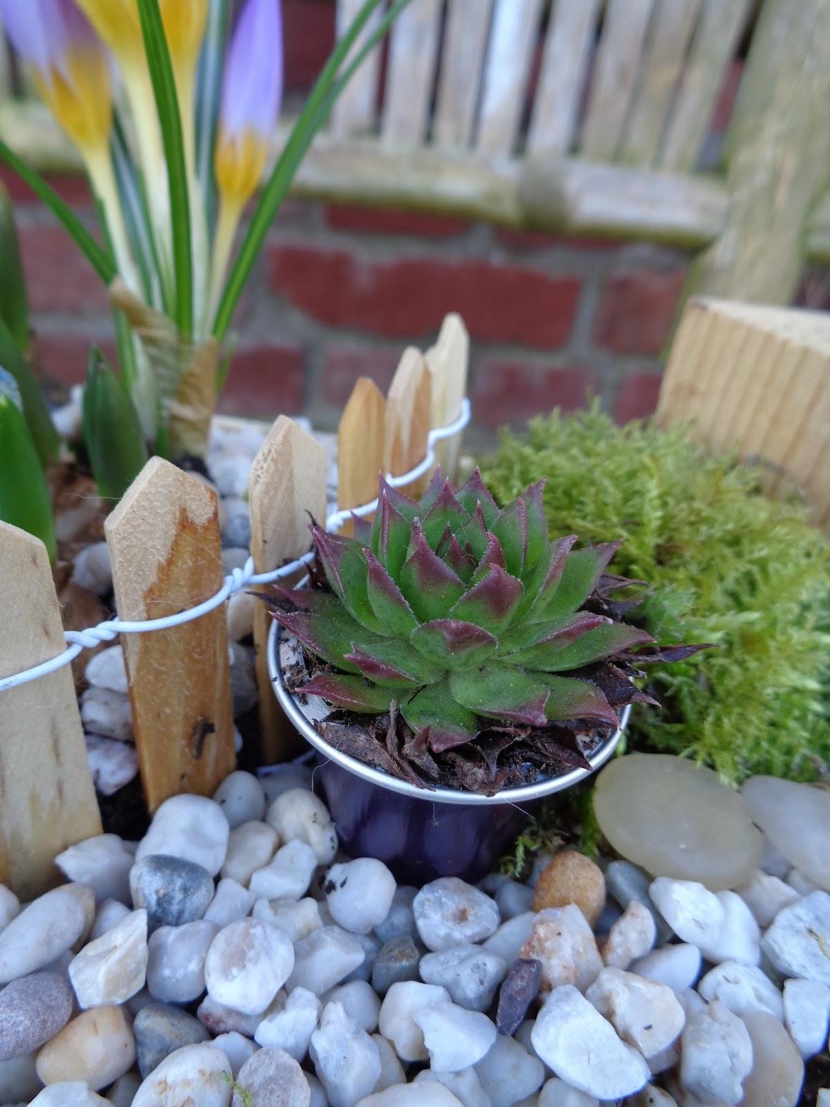 Coeur plein frigo vide mini jardin for Vide jardin finistere 2015