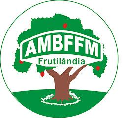 AMBFFM