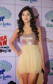 Actress Richa Panai Latest  Pictures at Memu Saitam Dinner with Stars Red Carpet  0