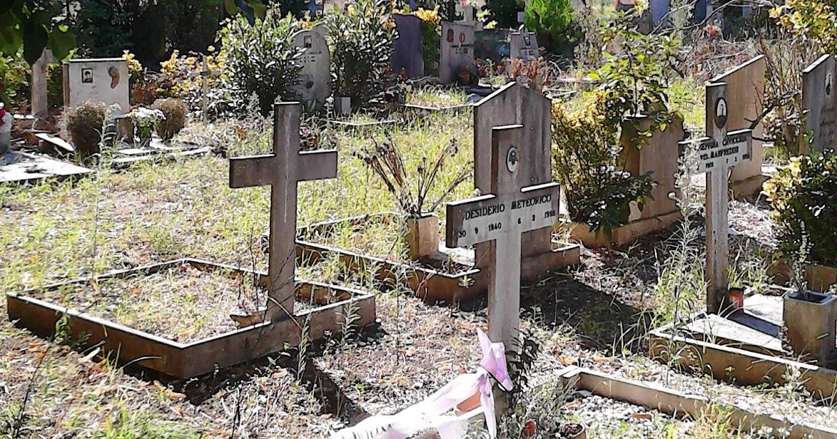 Roma fa schifo le strazianti condizioni del cimitero di - Cimitero flaminio prima porta ...