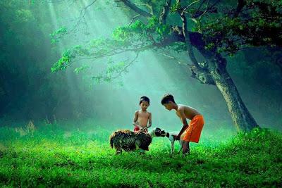Ketenangan Dan Kedamaian Di Desa