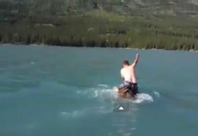 Man Rides Moose in Water