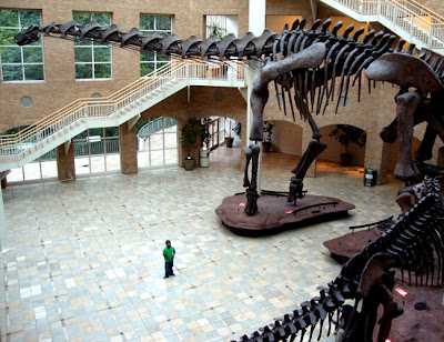 Fernbank Musuem of Natural History, Giants of the Mesozoic in the Great Hall