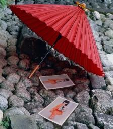 Origami & Arts