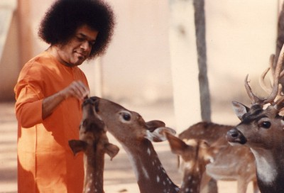 A shower of wisdom from Sri Sathya Sai during Ramadan.