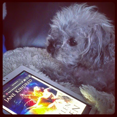 Murchie lays on a fuzzy white pillow. Before him sits a white Kobo with the cover of The Fallen Queen on its screen. The cover depicts a pale-skinned blonde woman in a ball gown, her arms outstretched. Behind her rise two arcs of water. She's lit in shades of red and purple with a background of dark blue.