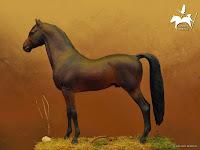 American Morgan Horse. Zarogán