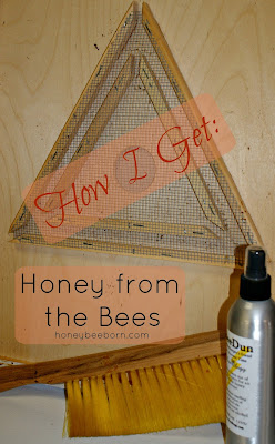 How I get honey from the bees