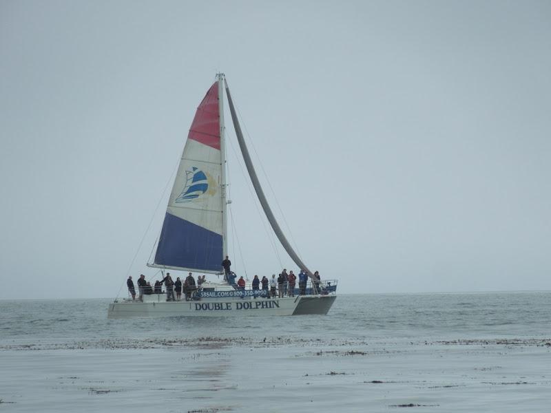Whale watchers Hendrys Beach