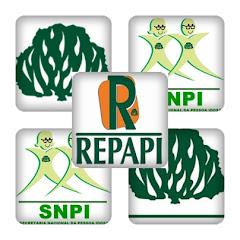 REPAPI