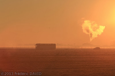 froid silhouette aube fumée brume Seine-et-Marne