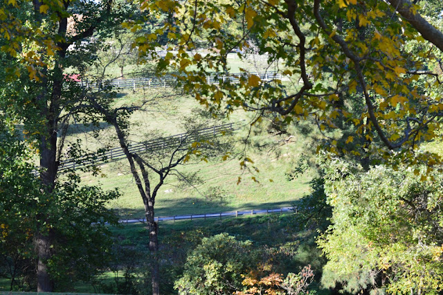 walking or hiking the Hills at Maymont, #RVA