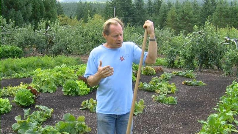 A Back to Eden Review | The Survival Gardener