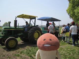 Namiki Gelato Tractor Ride Shichinohe ナミキジェラート トラクター乗車体験 七戸町
