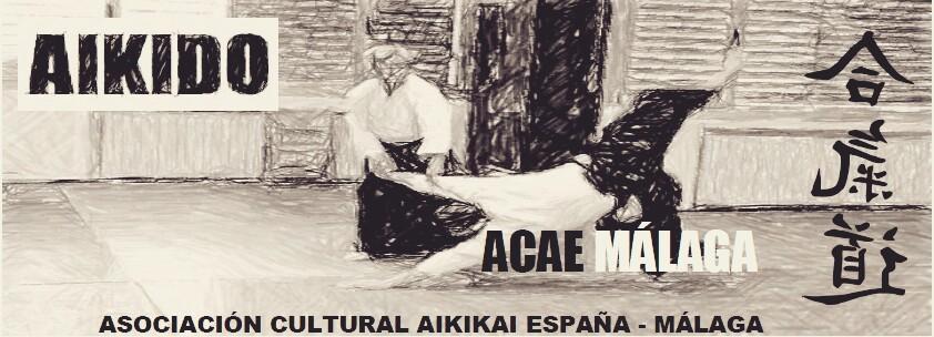 Aikido ACAE Málaga